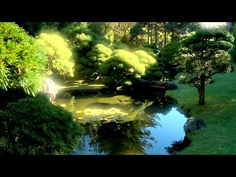 Zen Garden - Infinite Bliss - Nature Sounds Only- (No Music)