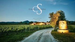Campo alla Sughera, Bolgheri, Tuscany