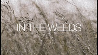 In the Weeds - 9am
