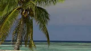 Koste pep locéan Indien - Patrick Victor (Seychelles)