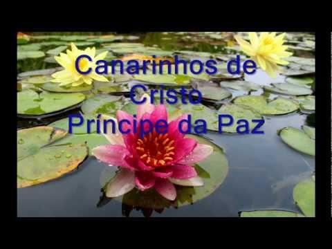 Musica Cristiana de Brasil – Príncipe da Paz – Canarinhos de Cristo