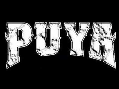Puya - Erizo
