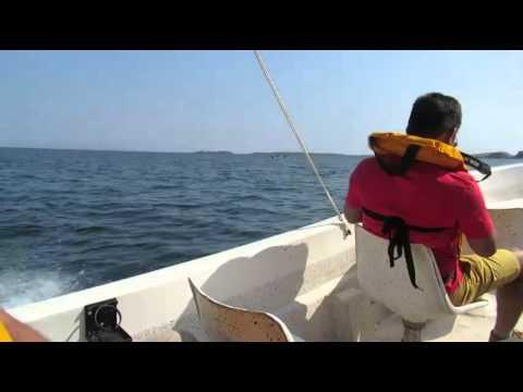 Lake Kariba Zambia Aquaculture Project