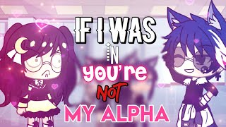 If I Was In 'You're Not My Alpha' | GLMM