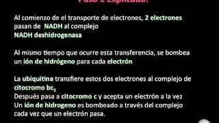 Presentación Cadena de Transporte de Electrones