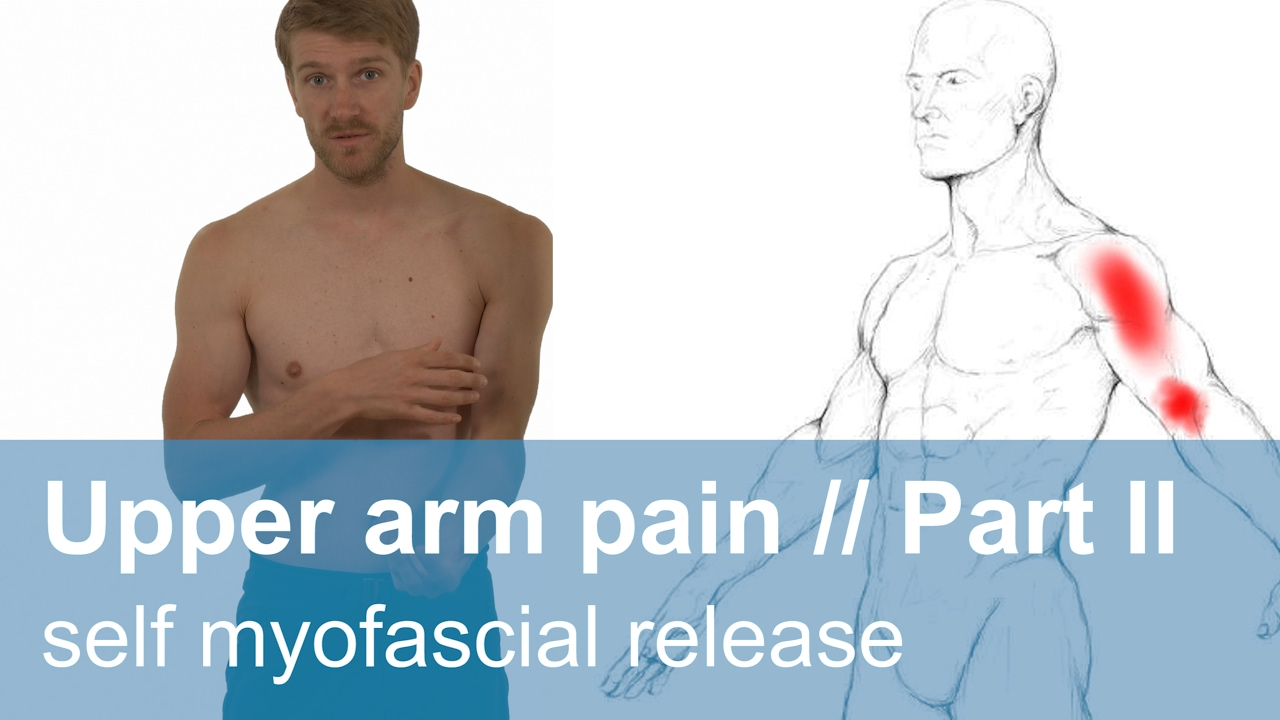 Muscle Pain In The Upper Arm Part 2 Self Myofascial Release Youtube