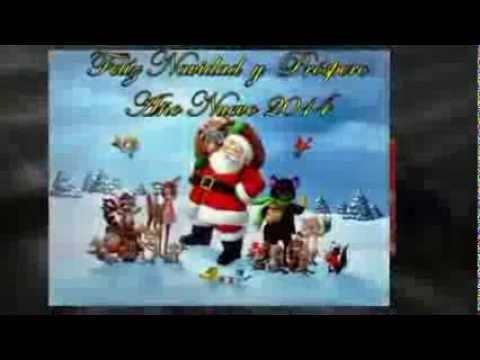 Frases Bonitas De Navidad Y Ano Nuevo Imagenes De Navidad Y Ano
