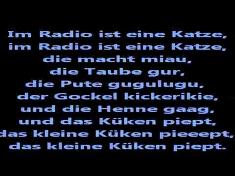Im Radio Ist Ein Küken Lied