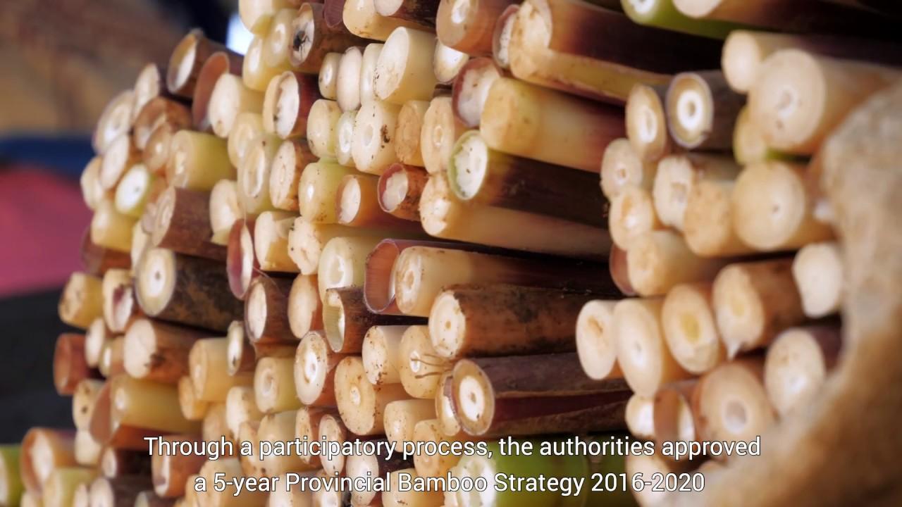 Un bel exemple de filière locale- le projet Bambou du GRET au Laos