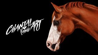 Chestnut Horse - Speedpaint - (my everyday practice)