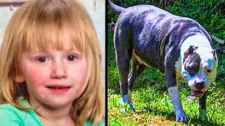 Toddler Missing For 2 Days; Man Opens Door, Realizes Pit Bull Had Her