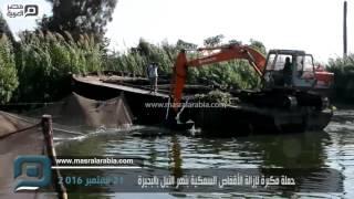 بالفيديو| حملة مكبرة لإزالة الأقفاص السمكية بنهر النيل بالبحيرة