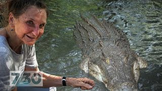 Reviving Malcolm Douglas's animal park with the biggest, baddest crocs of the Kimberley | 7.30