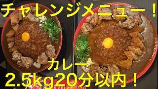 【チャレンジメニュー】フジヤマドラゴンカレー!2,500gを20分以内!【双子】【大食い】