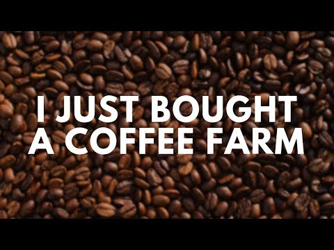 I Just Bought A Coffee Farm in Panama. Here's why...