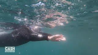 Elise Lucet nage avec les thons (Extrait 3)