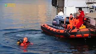 Marseille Firefighters Rescue Whale Stranded in Marseille Harbour