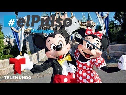 El Pulso | Las últimas noticias para el fotógrafo en ti | Telemundo
