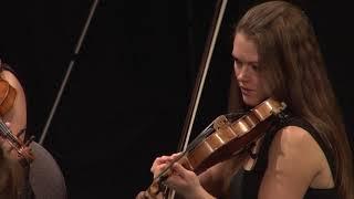 Joseph Haydn: Symphony In D Major, No. 6 \