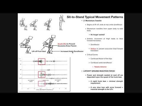 Biomechanics and Events of the Sit-to-Stand