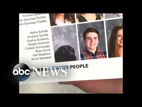 Black lab named Alpha gets his own school ID and a picture in the yearbook