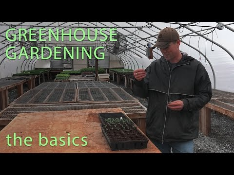The Basics of Greenhouse Gardening