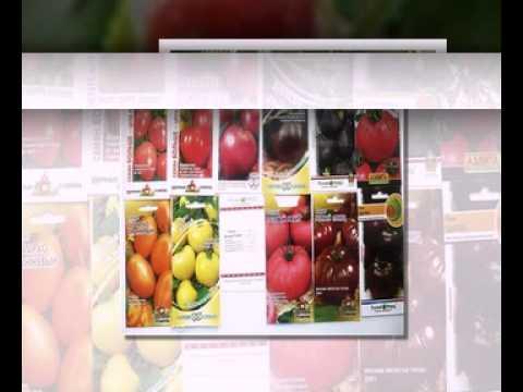 весовые семена овощей оптом