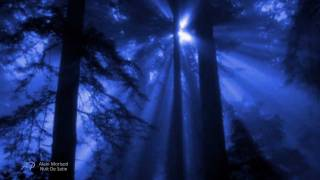 ~?~ALAIN MORISOD - Nuit de Satin