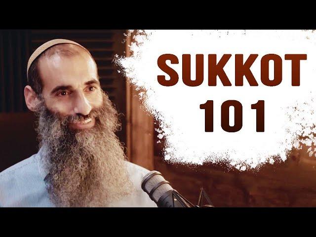 Sukkot 101