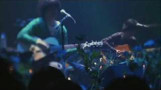 The Pillows Live Late Bloomer Series 02 BLUE SONG WITH BLUE POPPIES 2009.2.21 at YEBISU The Garden Hall 20th Anniversary.