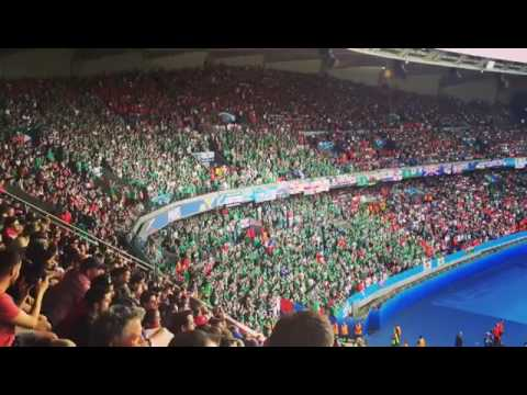 """Northern Ireland Fans Signing """"Will Grigg"""