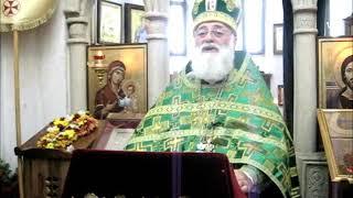 Мama Aleksandre Bolkvadze - მთავრობა, კორონა ვირუსი, ეკლესია და სხვ.