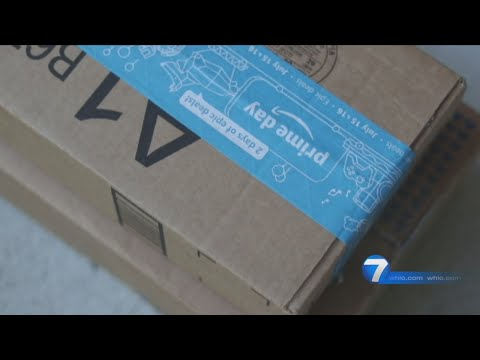 Amazon Brushing Scam | I-Team Investigation