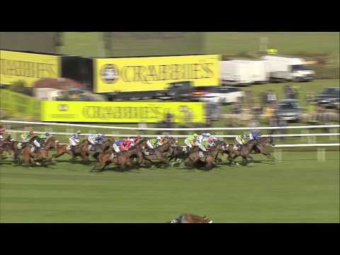2015 Crabbie's Grand National - Many Clouds - Racing UK