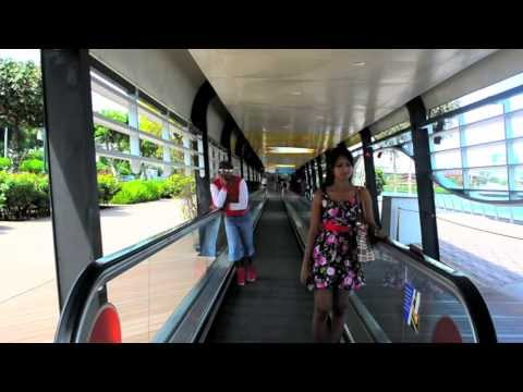 scooter vandi singapore trailer