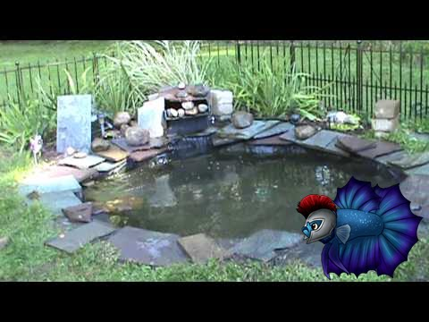 How To Install or Setup Pond Net To Keep Leaves Out of Pond - YouTube