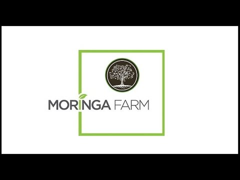 Mali Moringa farm project