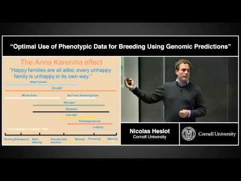 Nicolas Heslot - Optimal Use of Phenotypic Data for Breeding Using Genomic Predictions
