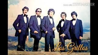 Los Grillos de Bolivia - Sin P…