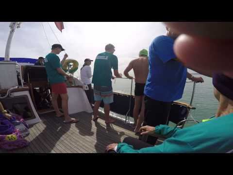 English Channel Swim 2015 YouTube