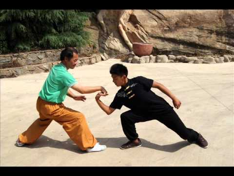 Learn self defense, study professional Chinese martial arts in our kung fu school