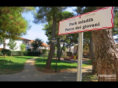 Park of the young (Novigrad)