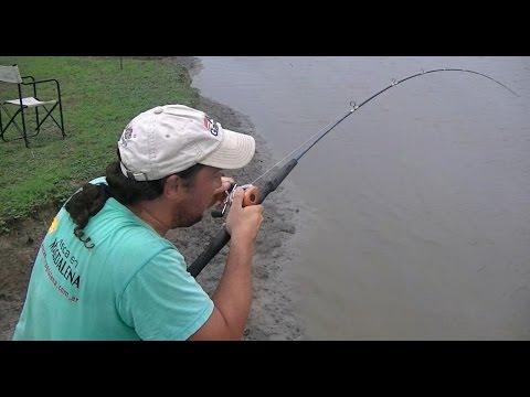 TV Nº151 23-01-2014 Pesca de carpas en el Rio Samborombon