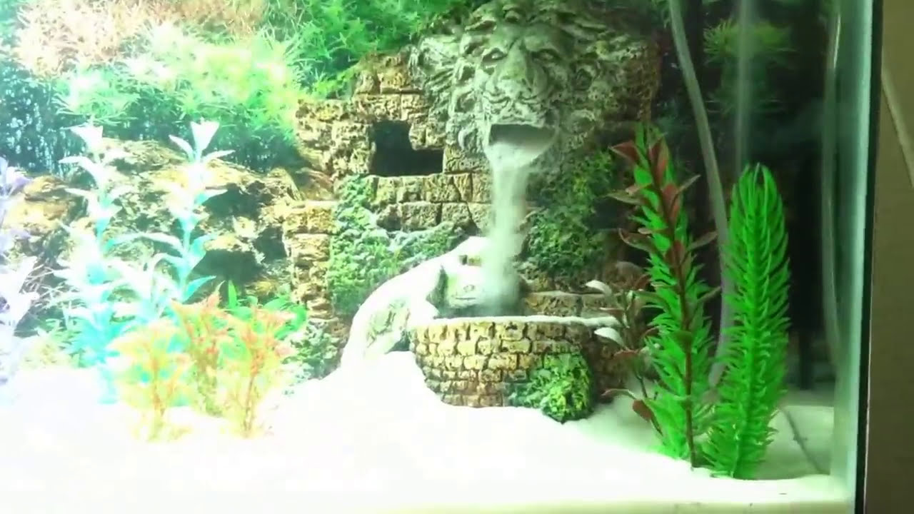 Underwater waterfall white sand betta tank d youtube for Waterfall fish tank