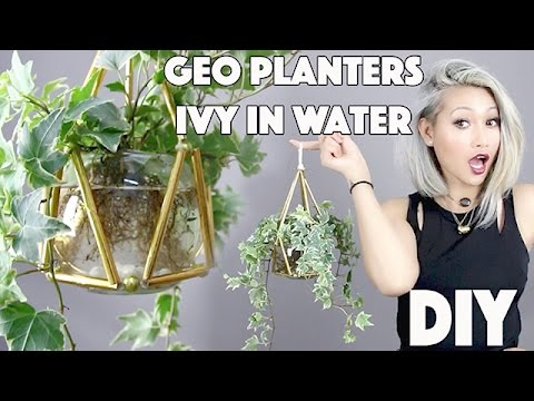 DIY:Geo Planters From Straws!!! +Planting Ivy In Water