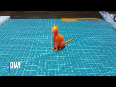 3D Printing. Timelapse - Abyssinian Cat Test