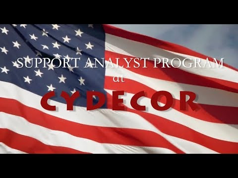 Support Analyst Program