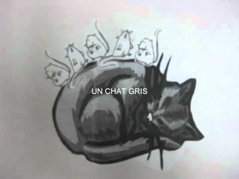 Un Chat Gris