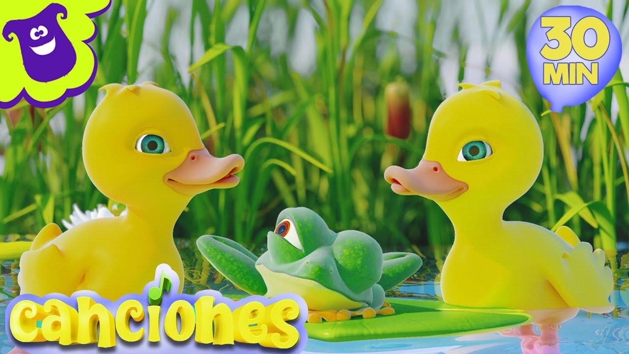 Cinco Patitos - Canciones Infantiles en Español | Videos para niños | LooLoo