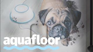 Смотреть видео Aquafloor - как прошел первый семинар в Москве? онлайн